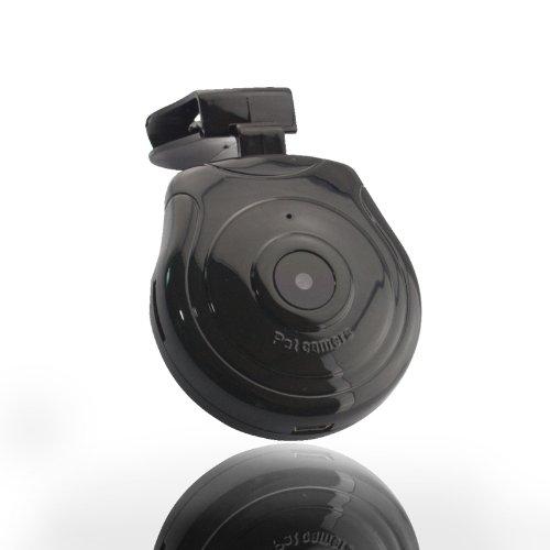 ckeyin digitale hundehalsband kamera video rekorder berwachungskamera monitor f r hunde katzen. Black Bedroom Furniture Sets. Home Design Ideas