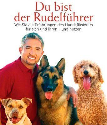 Du-bist-der-Rudelfhrer-Wie-Sie-die-Erfahrungen-des-Hundeflsterers-fr-sich-und-Ihren-Hund-nutzen-0