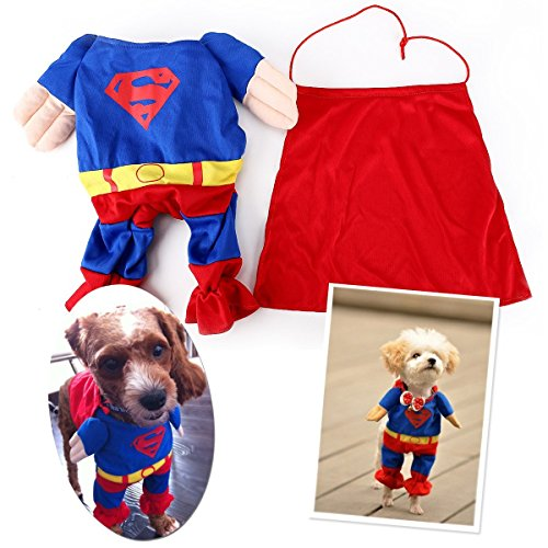 eqlef kleidung f r hunde katze pet puppy dog cat pet clothes superman hundewelpen katzen. Black Bedroom Furniture Sets. Home Design Ideas