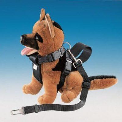 Nobby-Hunde-Auto-Sicherheitsgurt-L-4978-cm-B-25-mm-0