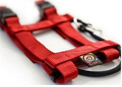Original-Illusion-Collar-Trainingshalsband-Leine-des-amerikanischen-Hundeflsterer-Cesar-Millan-Gre-Mrot-0