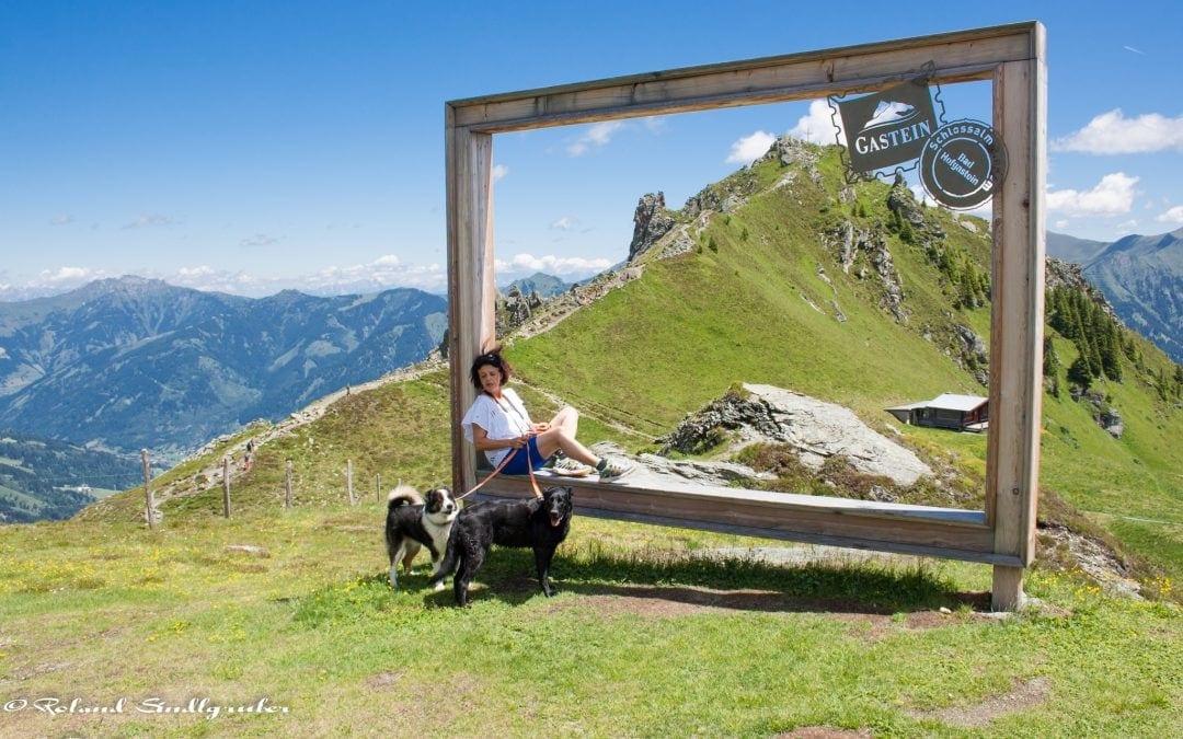 Hunde Foto: Roland und Xena und Lucky – Frauli (Gabi ) Xena und Lucky