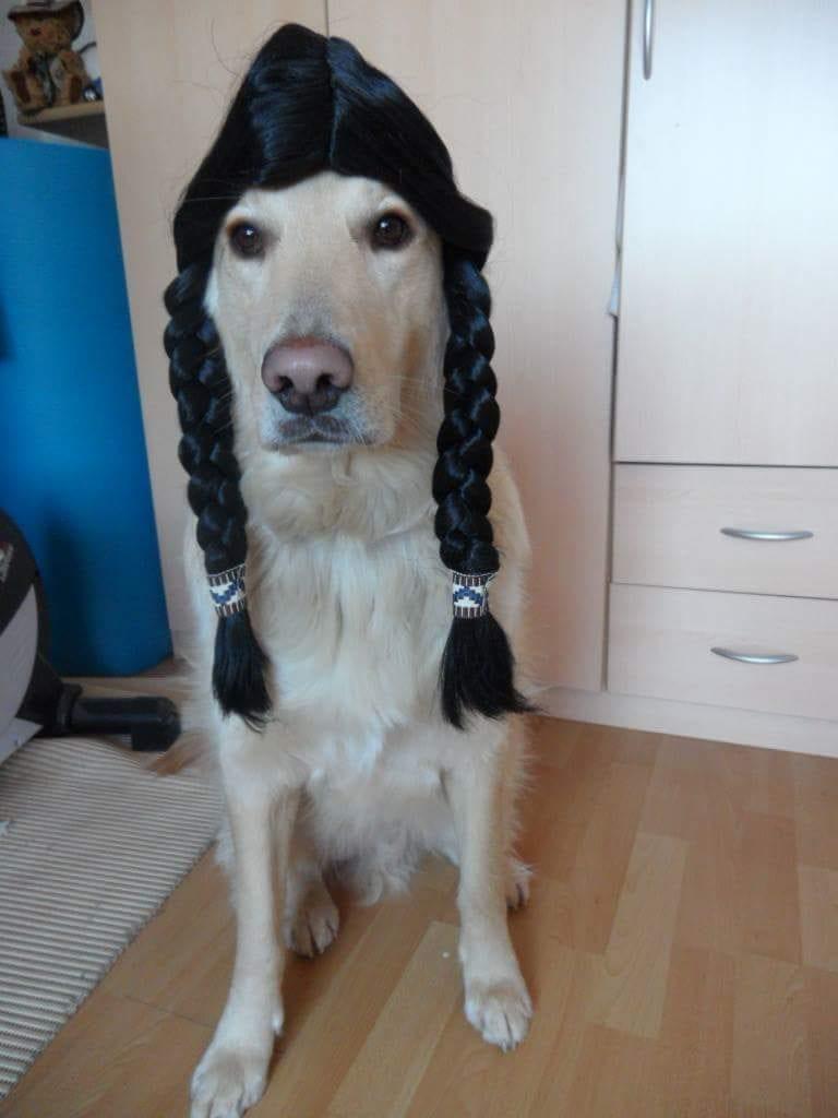 Hunde Foto: Renate und Sammy - Helau 🙂