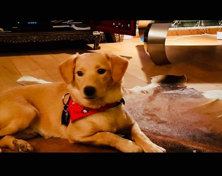 Hunde Foto: Anja und Kimi - Unser Schatz ❤️