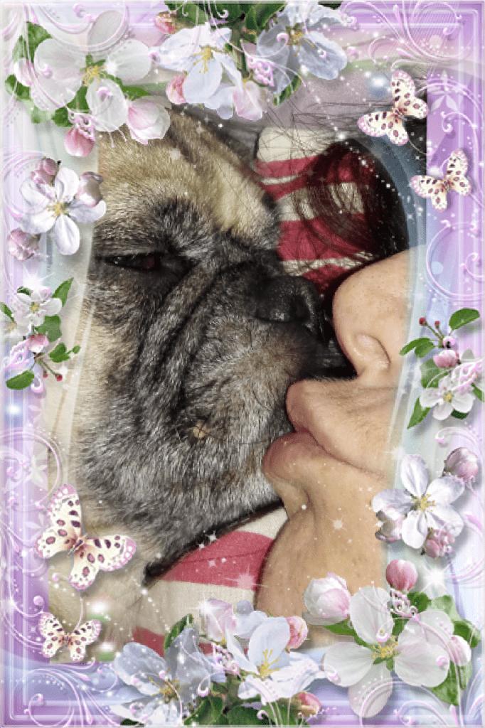 Hunde Foto: Simone und Grudgie - Liebe Pur