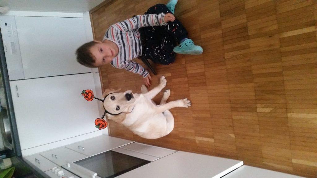 Hunde Foto: Svetlana und Chiara - Haloween
