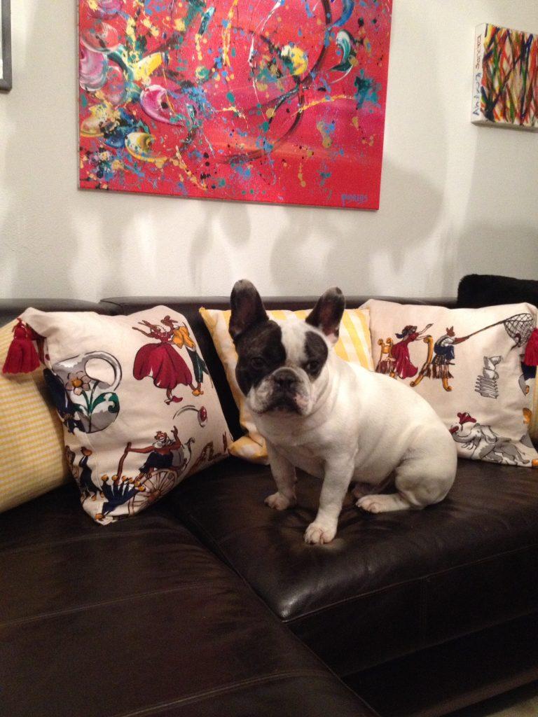 Hunde Foto: Cornelia und Winston - King Winston