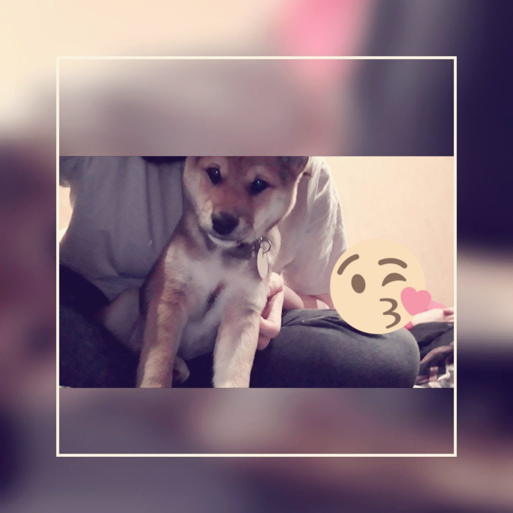 Hunde Foto: Jessica und Pablo... - Mein kleiner Schatz.❤