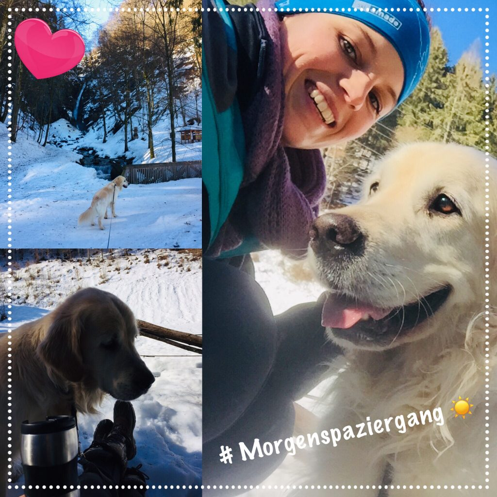 Hunde Foto: Bianca und Rico - Morgenspaziergang ☀️🔆