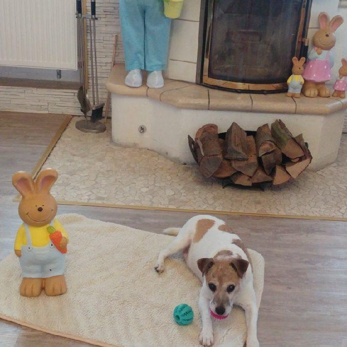 Hunde Foto: Marilena und Nicki – Ostern feiern  🍧