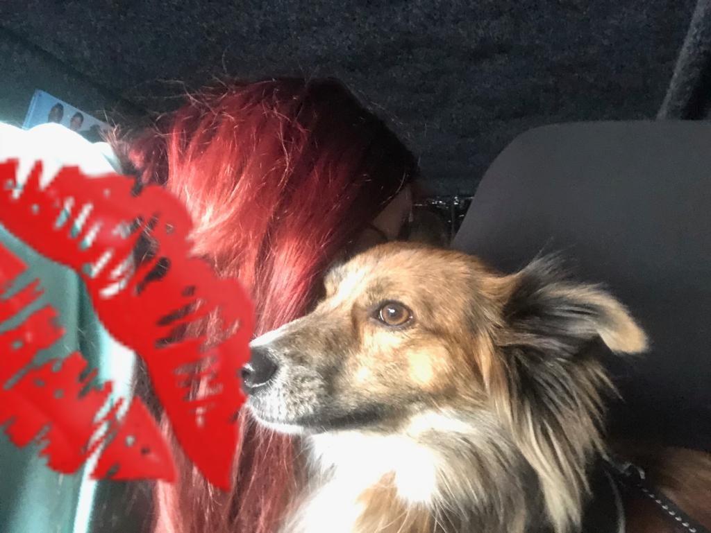 Hunde Foto: Jenny und Max - Mein Herz aus Rumänien