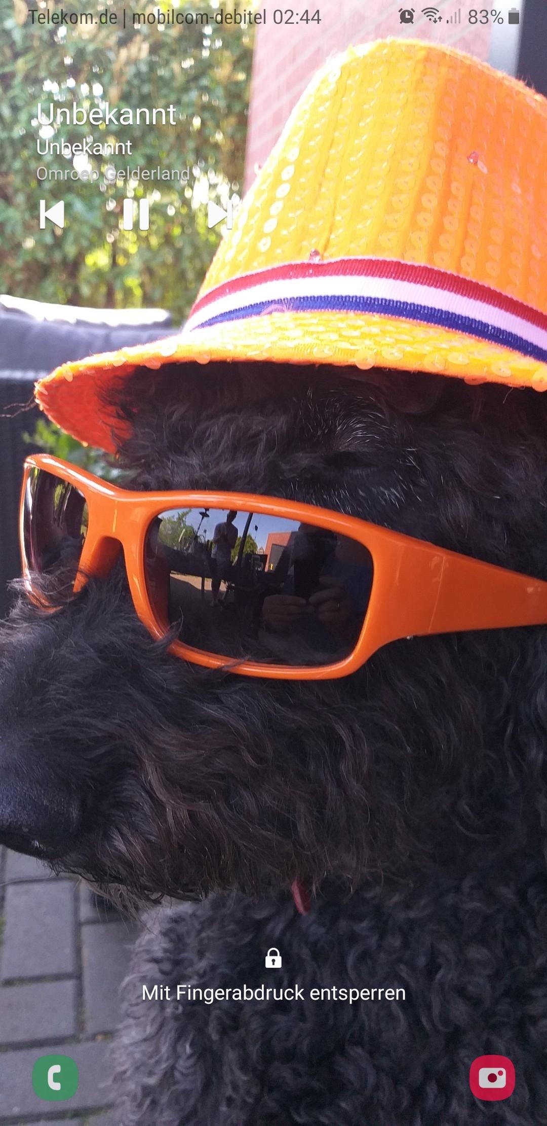 Hunde Foto: Jan und Assi – Cool man